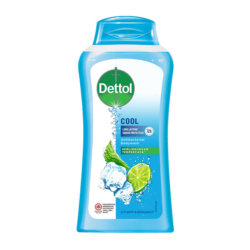 Dettol Bottle Cool 300ml | Gogobli