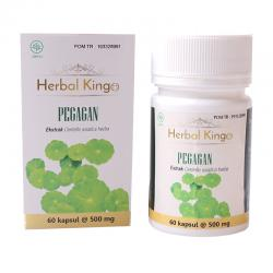 Herbal Kingo Pegagan 60 Kapsul @500mg