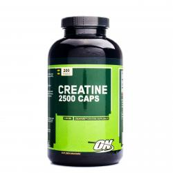 Optimum Nutrition Creatine 2500mg 200 Capsule