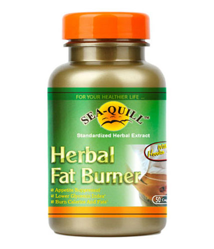 Sea-Quill Herbal Fat Burner Gordonii 50 Kapsul